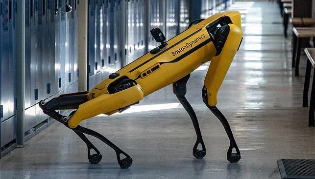 robot dog diamond mining